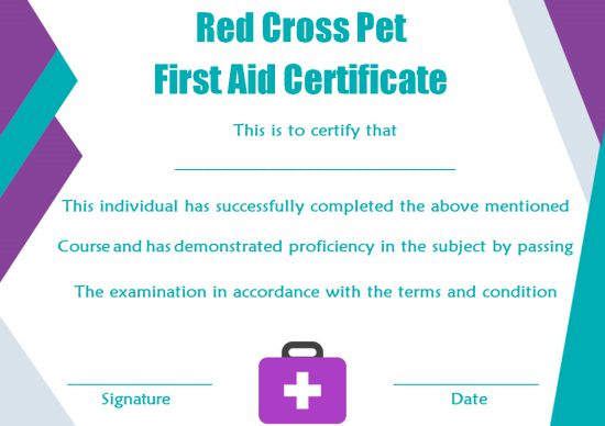 First Aid Certificate Template: 15 Free Examples and Sample