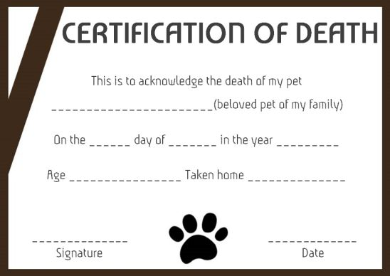 Death Certificate Format For Animals