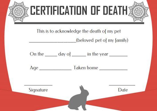 Veterinary Death Certificate Template